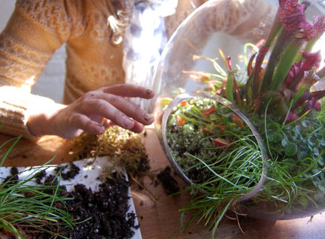 Формирование оригинального букета в стеклянной вазе-шар