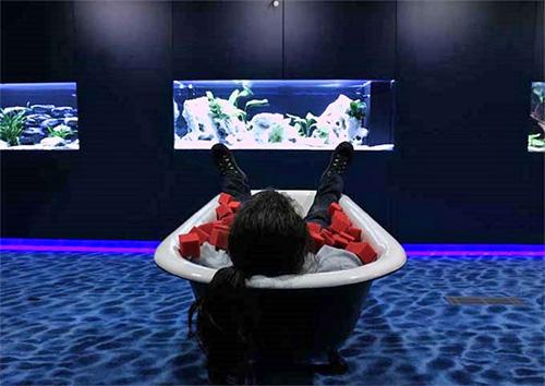 Офис компании Google, работать можно даже лежа в ванне