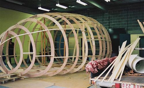 Деревянный каркас дома-яйца