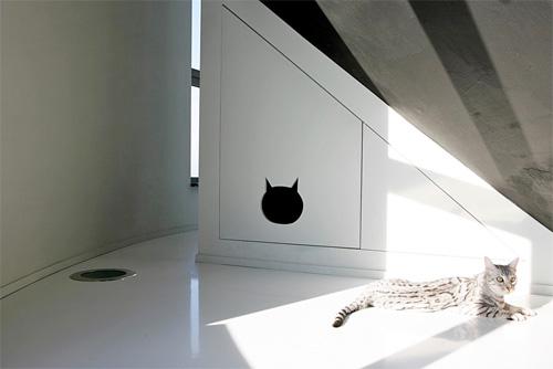 Оригинальный кошачий домик в водонапорной башне